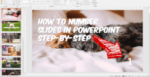 How to Number Slides in PowerPoint Step-by-Step