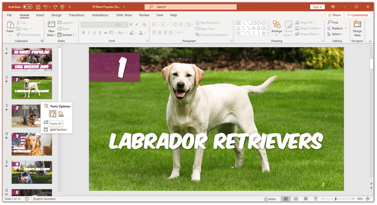 How to copy a slide in powerpoint paste