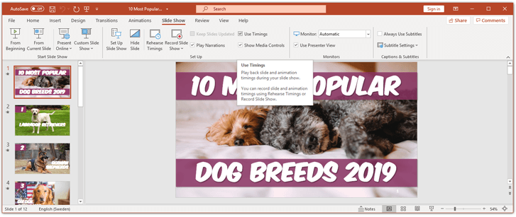 The slide show ribbon in powerpoint
